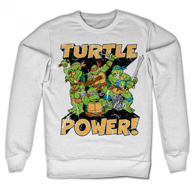 Teenage Mutant Ninja Turtles mikina s potiskem Turtle Power!