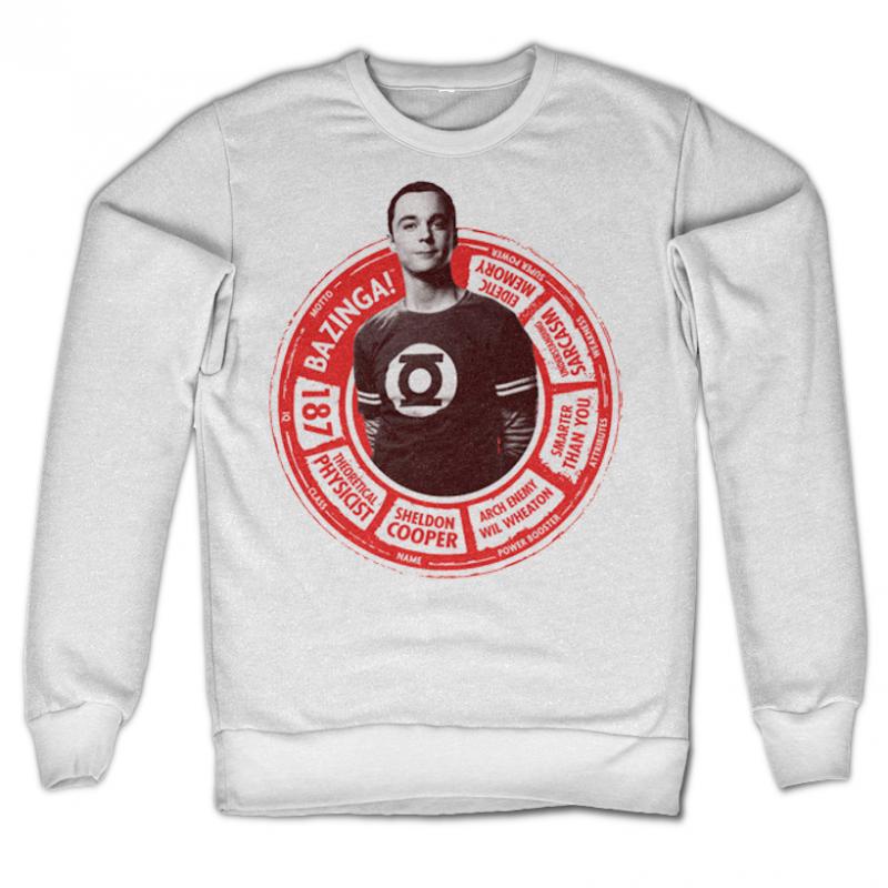 The Big Bang Theory mikina s potiskem Sheldon Circle