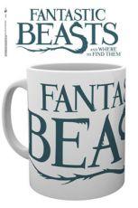 Fantastic Beasts Hrnek Logo