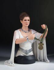 Star Wars A New Hope Bysta 1/6 Leia Hero of Yavin 17 cm