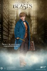 Fantastic Beasts My Favourite Movie Akční Figure 1/6 Newt Scamander 30 cm