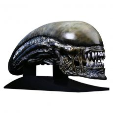 Alien: Covenant Replika 1/1 Xenomorph Head 90 cm