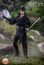 The Princess Bride Master Series Akční Figure 1/6 Westley/Dread Pirate Roberts 30 cm