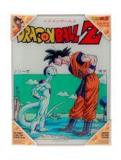 Dragon Ball Z Glass Plakát Freezer 30 x 40 cm