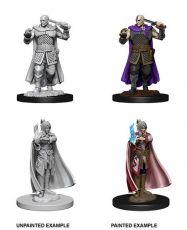 D&D Nolzur's Marvelous Miniatures Unpainted Miniatures Human Ranger & Moon Elf Sorcerer Case (6)