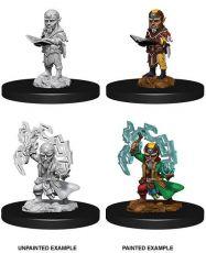 Pathfinder Battles Deep Cuts Unpainted Miniatures Male Gnome Sorcerer Case (6)