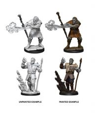D&D Nolzur's Marvelous Miniatures Unpainted Miniatures Male Firbolg Druid Case (6)