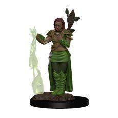 D&D Icons of the Realms Premium Miniature pre-painted Human Female Druid Case (6)