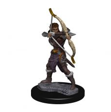 D&D Icons of the Realms Premium Miniature pre-painted Elf Ranger Case (6)