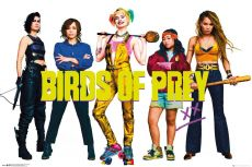 Birds of Prey Plakát Pack Group 61 x 91 cm (5)