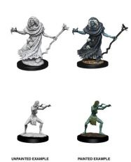 D&D Nolzur's Marvelous Miniatures Unpainted Miniatures Sea Hag & Bheur Hag Case (6)