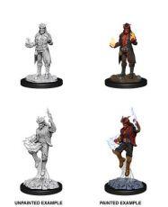 D&D Nolzur's Marvelous Miniatures Unpainted Miniatures Male Tiefling Sorcerer Case (6)