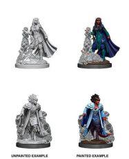 D&D Nolzur's Marvelous Miniatures Unpainted Miniatures Female Tiefling Sorcerer Case (6)