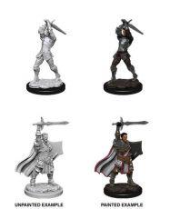 D&D Nolzur's Marvelous Miniatures Unpainted Miniatures Male Human Paladin Case (6)