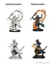 D&D Nolzur's Marvelous Miniatures Unpainted Miniatures Tiefling Male Sorcerer Case (6)