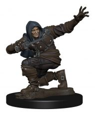 Pathfinder Battles Premium Miniature pre-painted Human Rogue Male Case (6)