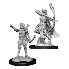 D&D Nolzur's Marvelous Miniatures Unpainted Miniatures Elf Ranger Female Case (6)