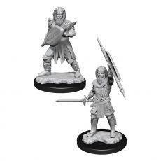 D&D Nolzur's Marvelous Miniatures Unpainted Miniatures Human Fighter Male Case (6)