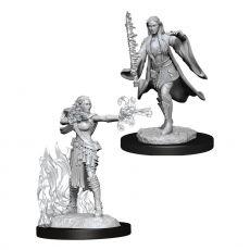 D&D Nolzur's Marvelous Miniatures Unpainted Multiclass Warlock & Sorcerer Female Case (6)
