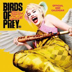 Birds of Prey Kalendář 2021 Anglická Verze