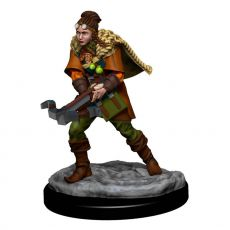 D&D Icons of the Realms Premium Miniature pre-painted Human Ranger Female Case (6)