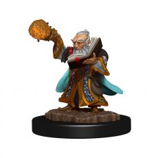 D&D Icons of the Realms Premium Miniature pre-painted Gnome Wizard Male Case (6)