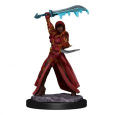 D&D Icons of the Realms Premium Miniature pre-painted Human Rogue Female Case (6)