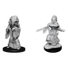 D&D Nolzur's Marvelous Miniatures Unpainted Miniatures Night Hag & Dusk Hag Case (6)
