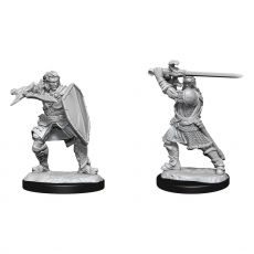 D&D Nolzur's Marvelous Miniatures Unpainted Miniatures Human Paladin Male Case (6)