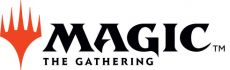Magic the Gathering Unpainted Miniatures Shapeshifters Case (6)