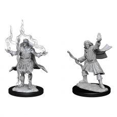 Pathfinder Battles Deep Cuts Unpainted Miniatures Elf Sorcerer Male Case (6)