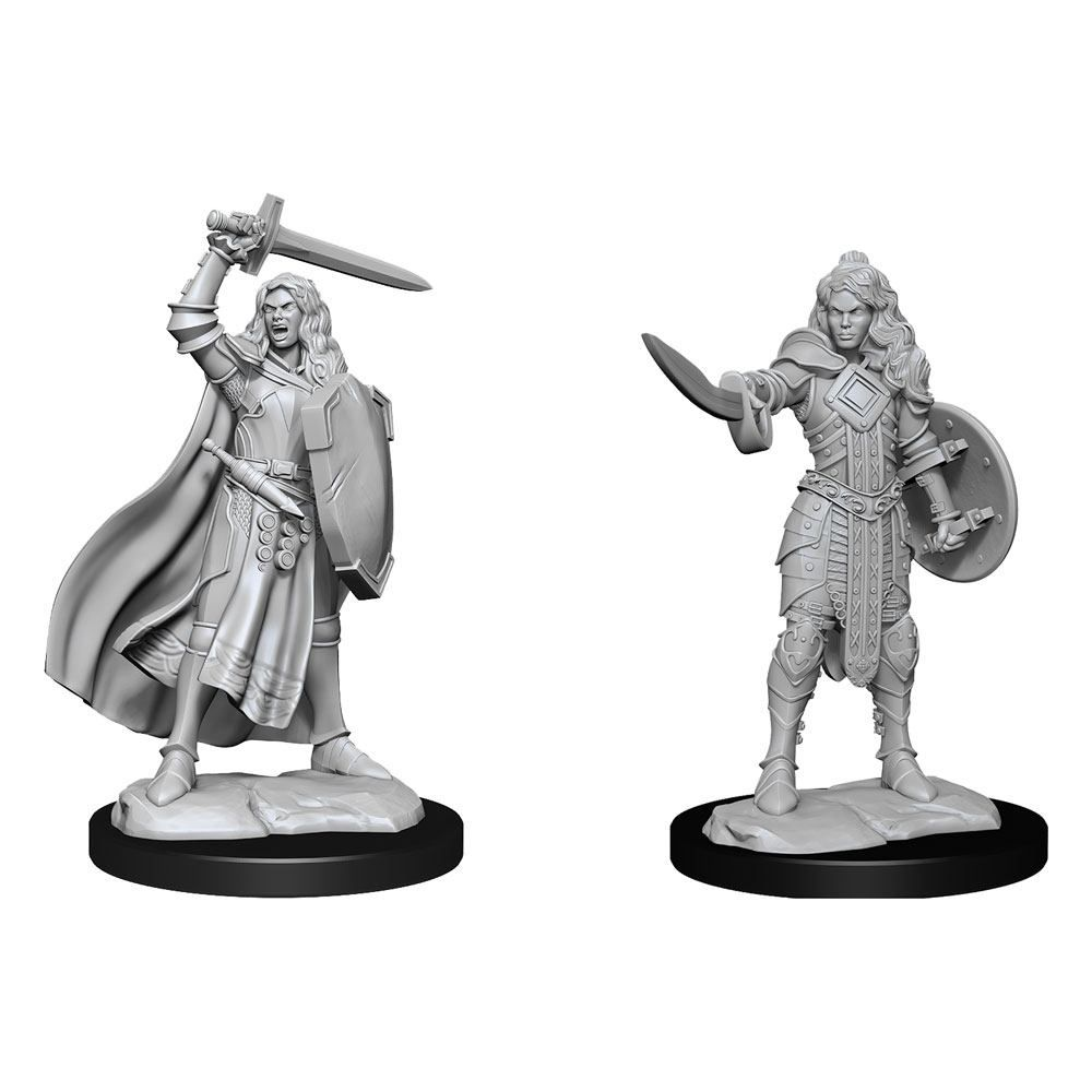 Pathfinder Battles Deep Cuts Unpainted Miniatures Human Champion Female Case (6) Wizkids