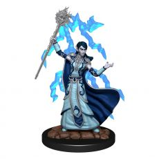 D&D Icons of the Realms Premium Miniature pre-painted Elf Wizard Female Case (6)