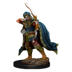 D&D Icons of the Realms Premium Miniature pre-painted Elf Rogue Male Case (6)