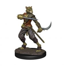 D&D Icons of the Realms Premium Miniature pre-painted Tabaxi Rogue Male Case (6)