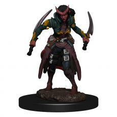 D&D Icons of the Realms Premium Miniature pre-painted Tiefling Rogue Female Case (6)