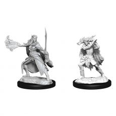 D&D Nolzur's Marvelous Miniatures Unpainted Miniatures Winter Eladrin & Spring Eladrin Case (2)