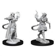 D&D Nolzur's Marvelous Miniatures Unpainted Miniatures Tiefling Sorcerer Female Case (2)