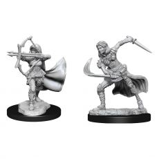 D&D Nolzur's Marvelous Miniatures Unpainted Miniatures Air Genasi Female Case (2)