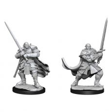 D&D Nolzur's Marvelous Miniatures Unpainted Miniatures Half-Orc Paladin Male Case (2)