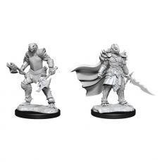 D&D Nolzur's Marvelous Miniatures Unpainted Miniatures Dragonborn Fighter Female Case (2)