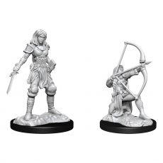 Pathfinder Battles Deep Cuts Unpainted Miniatures Human Fighter Female Case (2)