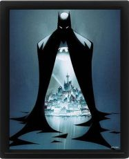 DC Comics Zarámovaný 3D Effect Plakát Pack Batman Gotham Protector 26 x 20 cm (3)